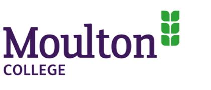 logo-mltn